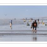 Promeneurs sur la plage de Ault