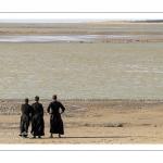 Séminaristes venus observer les phoques en baie de Somme (Le Hourdel)
