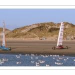 Europal Trophy - Compétition de chars-à-voile sur la plage de Berck-sur-mer.