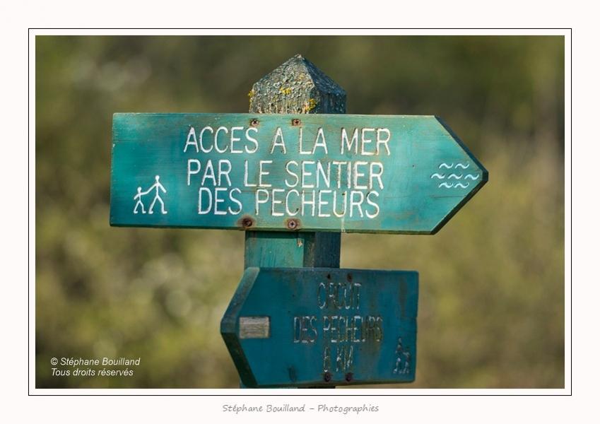 De_Dunes_en_Baie_Daigny_Philippe_14_04_2016_024-border