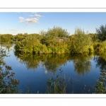 Bourdon et le Marais des Cavins