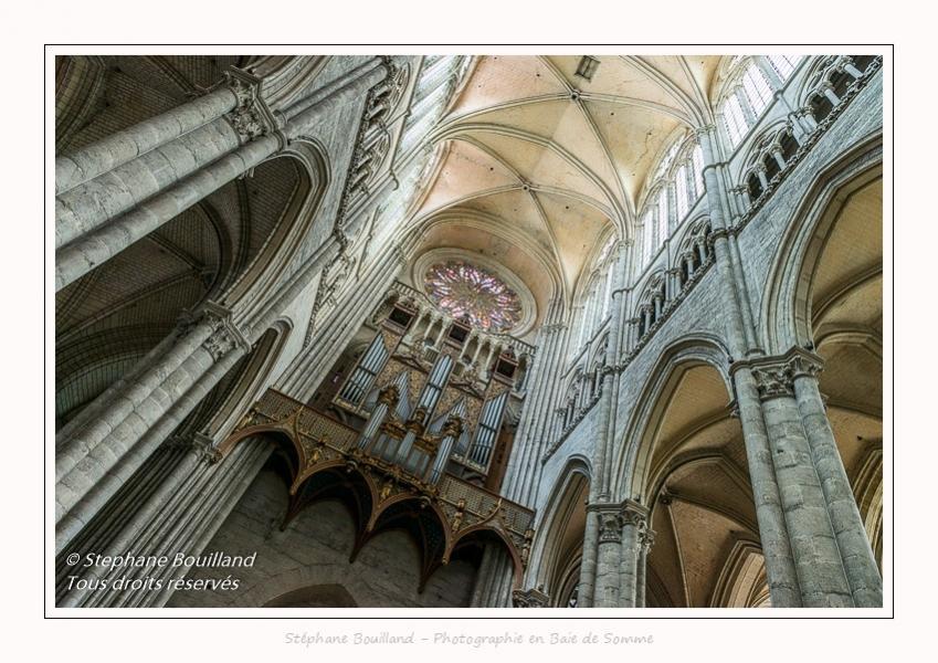 Amiens_Cathedrale_08_06_2017_048-border