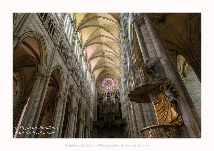 Amiens_Cathedrale_08_06_2017_158-border