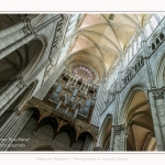 Amiens_Cathedrale_08_06_2017_048-border