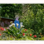 Hortillonages_081