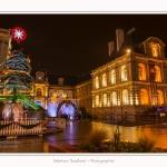 Marche_de_noel_Amiens_0041-border