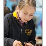 Ponçage de la surface travaillée. Noémie (enfant,fille, 8 ans) réalise une sculpture sur pierre dans le cadre des ateliers du festival de l'oiseau. Elle trace le contour de l'oiseau à sculpter au crayon sur la pierre, puis à la pointe à tracer et enfin au ciseau à bois. La pierre est ensuite poncée et les détails ajoutés. Saison : Printemps - Lieu : Abbeville, Somme, Picardie, France.