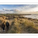 Les dunes de la Slack près d'Ambleteuse (Côte d'Opale, Grand Site des deux Caps)