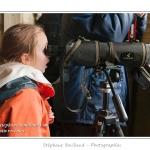 Noémie (enfant, fille, 8ans) observe les oiseaux à la lunette d'approche prêtée par le guide depuis l'intérieur d'un observatoire. Découverte de la réserve avifaune de Grand-Laviers dans le cadre du festival de l'oiseau. Réserve de chasse mise en place par les chasseurs dans les anciens bassins de  décantation de la sucrerie fermée en 2010. Les bassins ont été rachetés et remis en eau, des observatoires sont aménagés petit à petit pour le public. De nombreuses espèces d'oiseaux  fréquentent le site.  Saison : Printemps - Lieu : Grand-Laviers, Vallée de la Somme, Somme, Picardie, France.