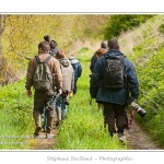 Découverte de la réserve avifaune de Grand-Laviers dans le cadre du festival de l'oiseau. Réserve de chasse mise en place par les chasseurs dans les anciens bassins de  décantation de la sucrerie fermée en 2010. Les bassins ont été rachetés et remis en eau, des observatoires sont aménagés petit à petit pour le public. De nombreuses espèces d'oiseaux  fréquentent le site.  Saison : Printemps - Lieu : Grand-Laviers, Vallée de la Somme, Somme, Picardie, France.