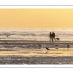 Promeneurs sur la plage de la Mollière d'Aval