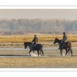 Cavalières en promenade dans la baie à marée basse (Baie de Somme)