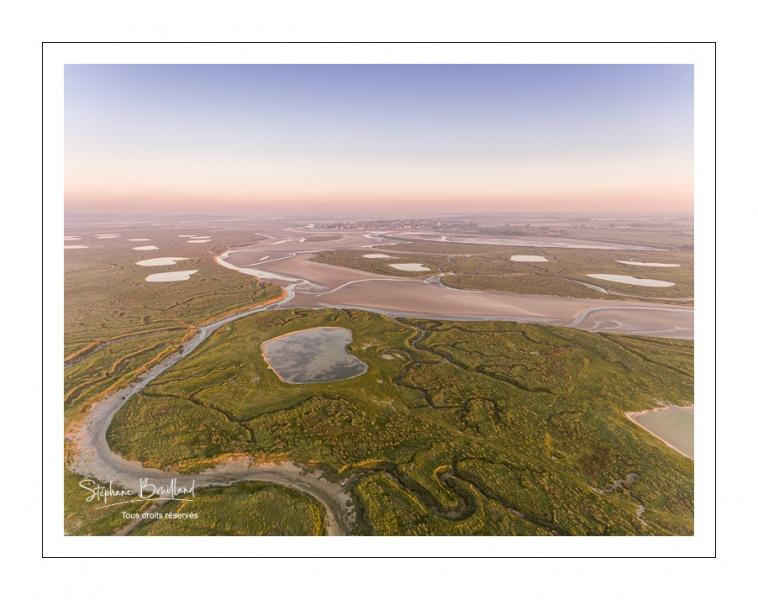 Les mollières de la Baie de Somme au petit matin (vue aérienne)