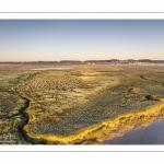 Les mollières face à Saint-Valery