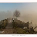 Bouvaque_08_03_2016_006-border