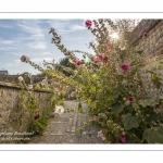 La cité médiévale de Saint-Valery-sur-Somme