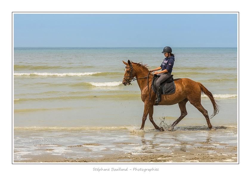 Cavaliers_St_Quentin_tourmont_31_07_2015_093-BorderMaker
