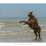 Cavaliers_St_Quentin_tourmont_31_07_2015_064-BorderMaker