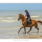 Cavaliers_St_Quentin_tourmont_31_07_2015_085-BorderMaker