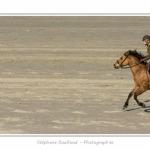 Equitation_Endurance_12_04_2015_017-BorderMaker.jpg