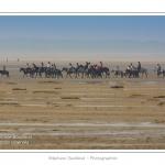 Cavaliers en promenade dans la réserve naturelle en Baie de Somme à marée basse - saison : été - Lieu : Réserve naturelle, proximité du parc ornithologique du Marquenterre, Saint-Quentin-en-Tourmont, Baie de Somme, Somme, Picardie, France.