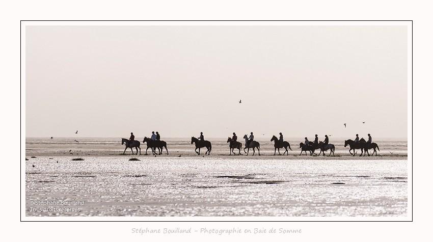 chevaux_Plage_Maye_04_08_2016_012-border
