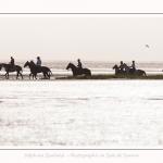 chevaux_Plage_Maye_04_08_2016_009-border