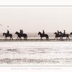 chevaux_Plage_Maye_04_08_2016_010-border