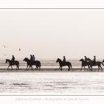 chevaux_Plage_Maye_04_08_2016_011-border