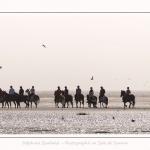 chevaux_Plage_Maye_04_08_2016_013-border