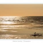 Silhouette(s) en contre jour ( ombre chinoise) sur la plage de Cayeux-sur-mer - saison : été - Lieu :Cayeux-sur-mer, Côte Picarde, Somme, Picardie, France.