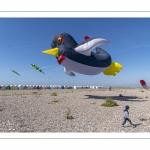 Le festival de Cerfs-volants le long du chemin des planches