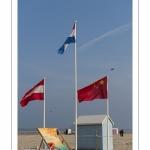 Rencontres Internationales de Cerfs-Volantsde Berck-sur-mer