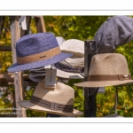 chapeau - Journées des Plantes de Chantilly