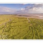 Les mollières de la Baie de Somme au petit matin au Cap Hornu (vue aérienne)