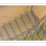 France, Pas-de-Calais (62), côte d'Opale, Grand site des deux caps, La plage de Tardinghen avec ses bouchots pour la culture des moules, le cap blanc-nez en arrière plan et l'épave du Lord Grey, ce chalutier britannique, long de 37 mètres, réquisitionné en 1915 par la Royal Navy et transformé en démineur, qui a sombré le 2 décembre 1917 lors d'une tempête  (Vue aérienne)// France, Pas-de-Calais (62), Opal Coast, Great site of the two capes, Tardinghen beach with its bouchots for mussel farming, the Cap Blanc-Nez in the background and the wreck of the Lord Grey, this 37-meter long British trawler, requisitioned in 1915 by the Royal Navy and transformed into a mine-clearer, which sank on December 2, 1917 during a storm (aerial view)