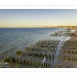 France, Pas-de-Calais (62), côte d'Opale, Grand site des deux caps, La plage de Tardinghen avec ses bouchots pour la culture des moules, le cap blanc-nez en arrière plan et l'épave du Lord Grey, ce chalutier britannique, long de 37 mètres, réquisitionné en 1915 par la Royal Navy et transformé en démineur, qui a sombré le 2 décembre 1917 lors d'une tempête // France, Pas-de-Calais (62), Opal Coast, Great site of the two capes, Tardinghen beach with its bouchots for mussel farming, the Cap Blanc-Nez in the background and the wreck of the Lord Grey, this 37-meter long British trawler, requisitioned in 1915 by the Royal Navy and transformed into a mine-clearer, which sank on December 2, 1917 during a storm.