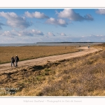 Une après-midi de Février, alors que les promeneurs viennent profiter du soleil sur la plage du Crotoy en baie de Somme. Saison : Hiver - Lieu : Le Crotoy, Baie de Somme, Somme, Picardie, Hauts-de-France, France. One afternoon in February, while walkers come to enjoy the sun on the beach of Crotoy in the Bay of Somme. Season: Winter - Location: Le Crotoy, Somme Bay, Somme, Picardie, Hauts-de-France, France.