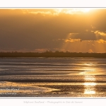 Crépuscule sur la plage du Crotoy et coucher de soleil - Saison : Hiver - Lieu : Le Crotoy, Baie de Somme, Somme, Picardie, Hauts-de-France, France. Twilight on Crotoy beach and sunset - Season: Winter - Location: Le Crotoy, Somme Bay, Somme, Picardie, Hauts-de-France, France.