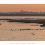 La baie de Somme par grand froid, vue sur  le bassin de chasse du Crotoy au petit matin- Saison : Hiver - Lieu : Le Crotoy, Baie de Somme, Somme, Picardie, Hauts-de-France, France.The Baie de Somme in cold weather, overlooking Le Crotoy - Season: Winter - Location: Le Crotoy, Somme, Somme, Picardie, Hauts-de-France, France
