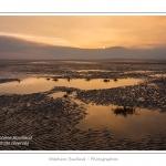 Saison : hiver - Lieu : Le Crotoy, Baie de Somme, Somme, Picardie, France.