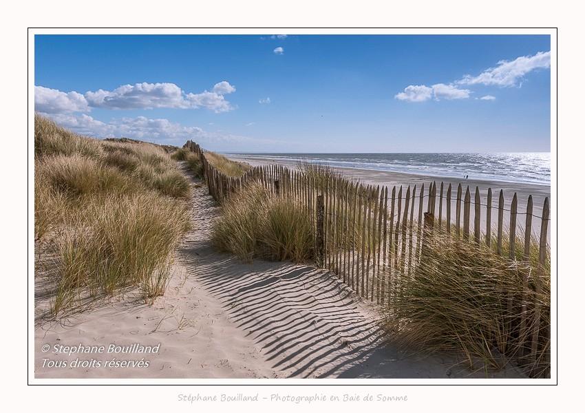Dunes_Quend_Plage_18_04_2017_009-border