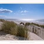 Dunes_Quend_Plage_18_04_2017_001-border