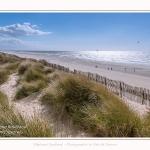 Dunes_Quend_Plage_18_04_2017_002-border