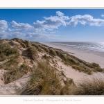 Dunes_Quend_Plage_18_04_2017_006-border