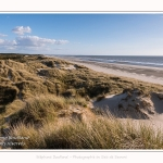 Dunes_Quend_Plage_18_04_2017_023-border