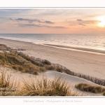 Les dunes et la plage de Quend-Plage, en hiver. Saison : Hiver - Lieu : Quend-Plage, Somme, Picardie, Hauts-de-France, France. The dunes and beach of Quend-Plage, in winter. Season: Winter - Location: Quend-Plage, Somme, Picardy, Hauts-de-France, France.