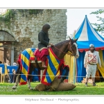 Eaucourt_Spectacle_chevalerie_0045-border