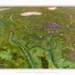 DPM_Drone_30_07_2016_003-border