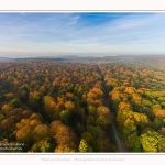 Foret_Crecy_drone_Automne_01_11_2016_003-border